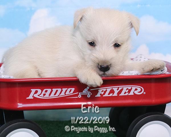 Eric (M)