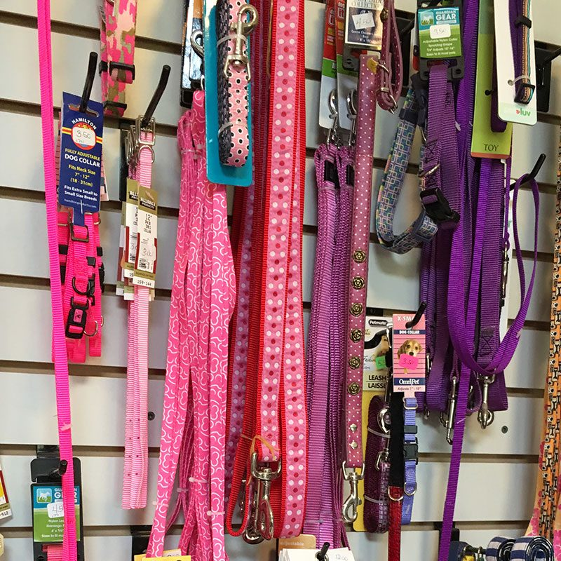 Pet Supplies - Leashes and Collars