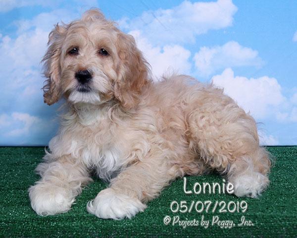 Lonnie (M)