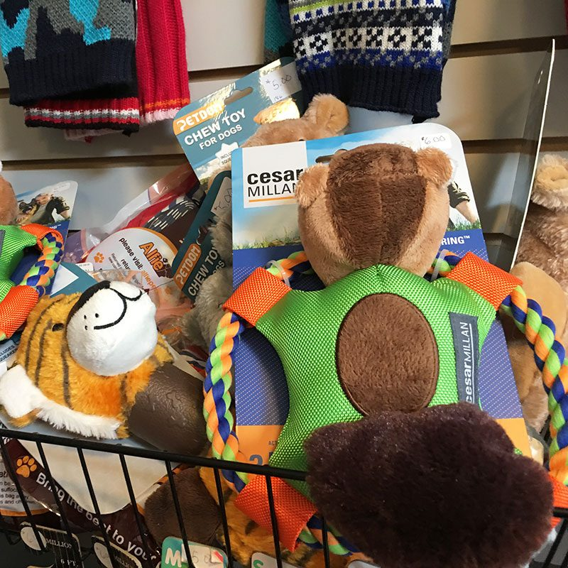 Pet Supplies - Stuffed Toys